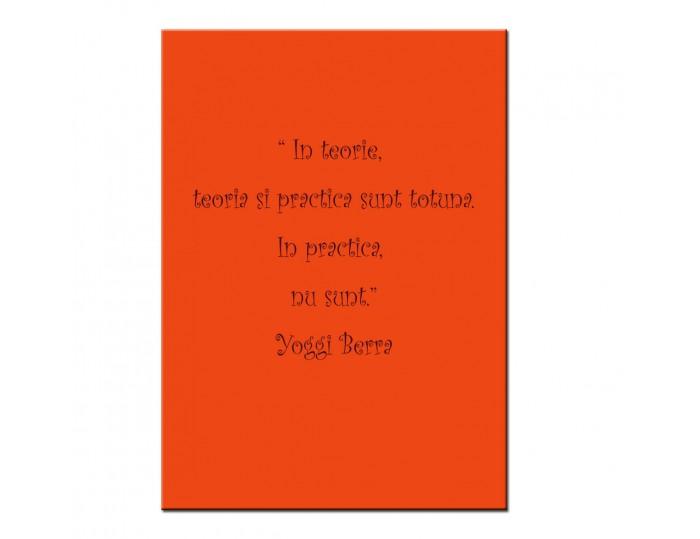 In teorie, teoria si practica sunt totuna. In practica, nu sunt.