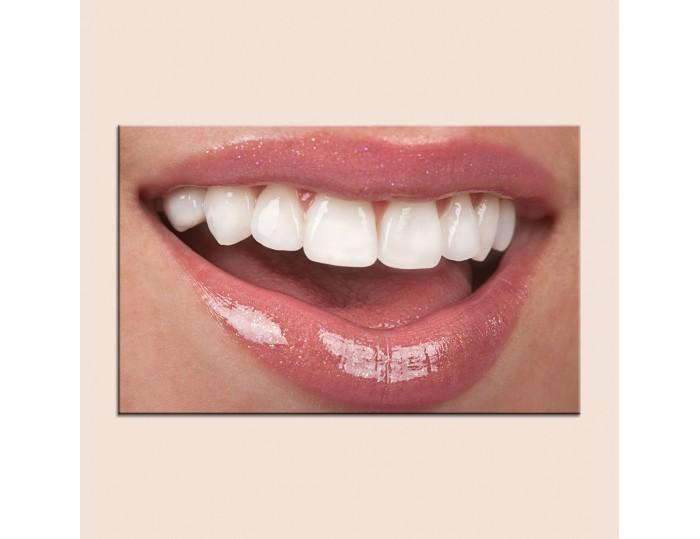 Tablouri stomatologii cod 9002
