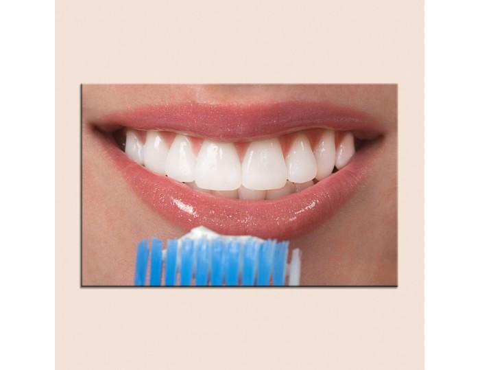 Tablouri stomatologii cod 9003