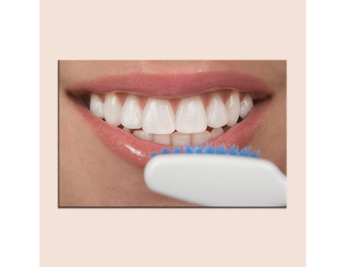 Tablouri stomatologii cod 9004