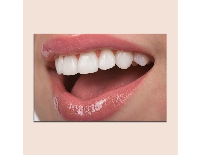 Tablouri stomatologii cod 9005