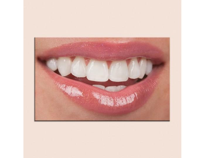 Tablouri stomatologii cod 9006