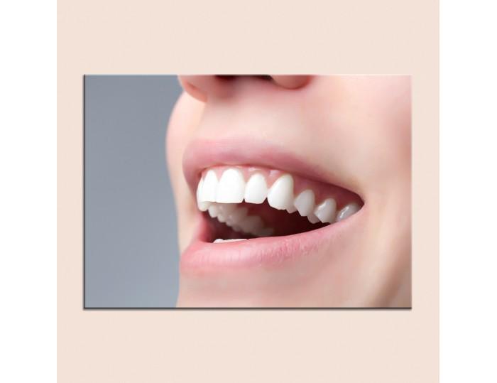 Tablouri stomatologii cod 9008
