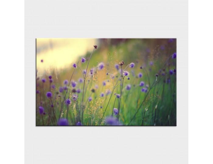 Tablouri cu flori cod flo-1