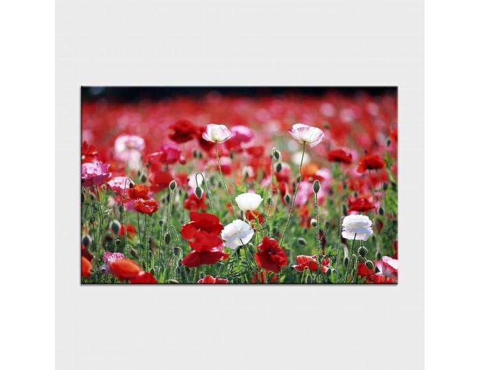 Tablouri cu flori cod flo-2