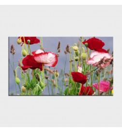 Tablouri cu flori cod flo-5