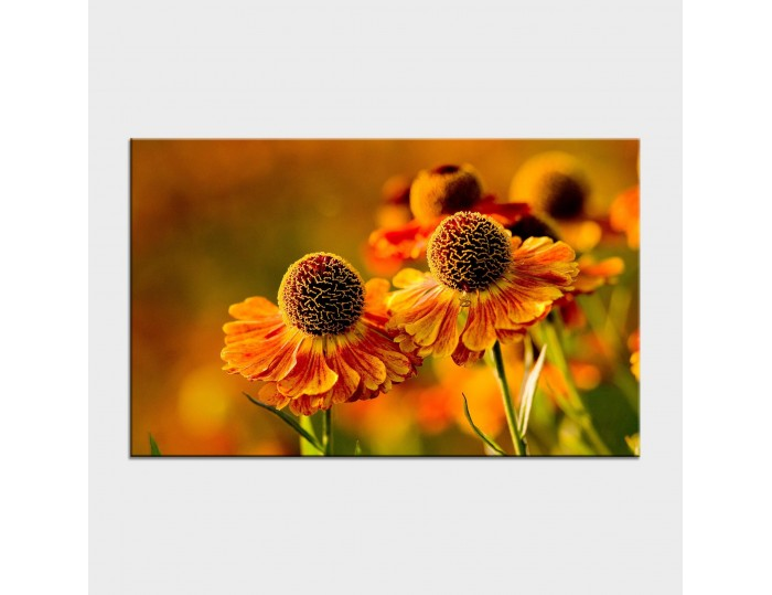 Tablouri cu flori cod flo-19