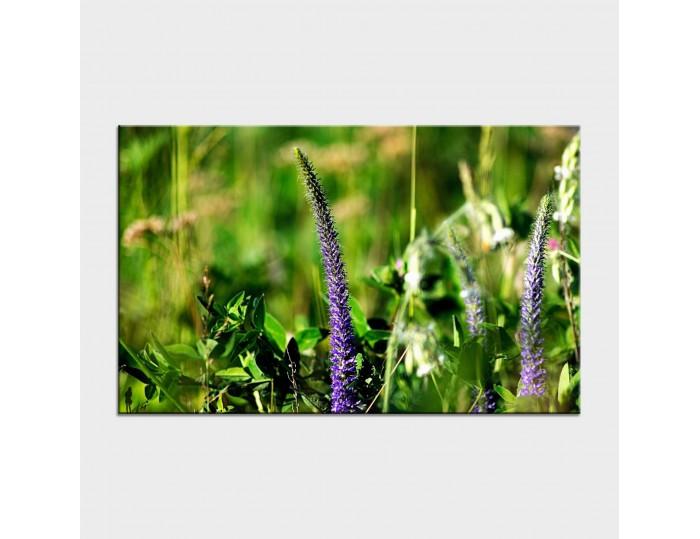 Tablouri cu flori cod flo-21