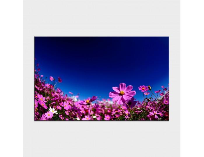 Tablouri cu flori cod flo-22
