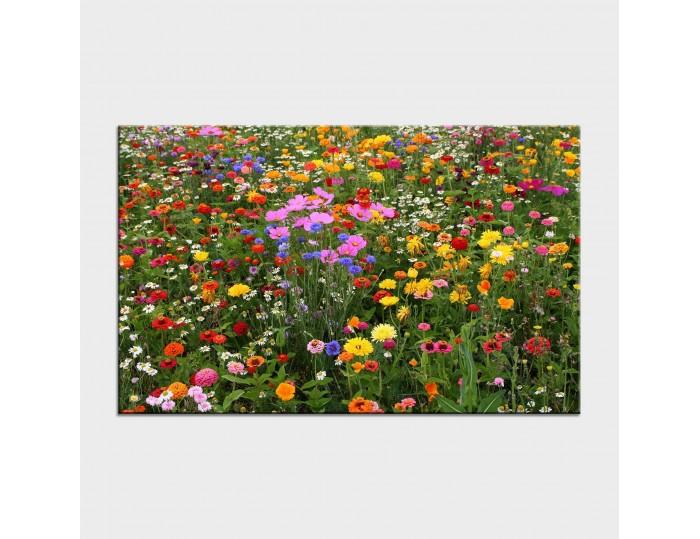 Tablouri cu flori cod flo-26
