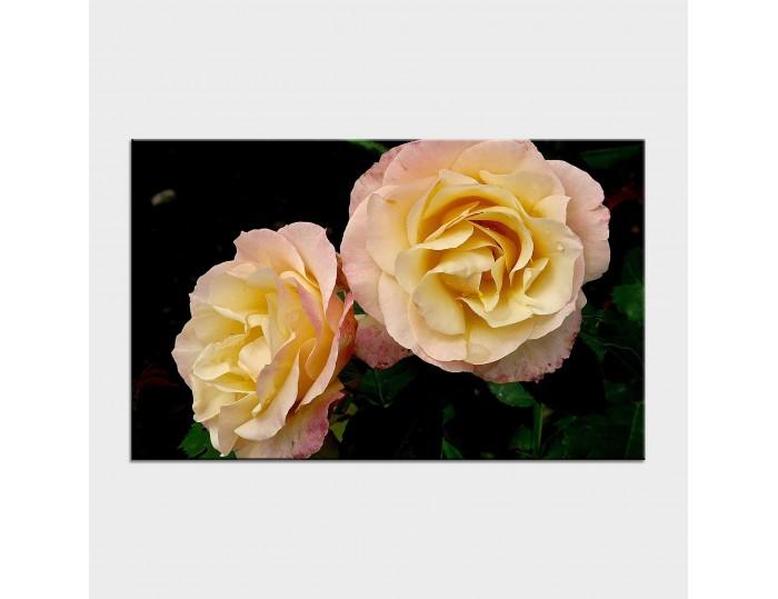 Tablouri cu flori cod flo-27