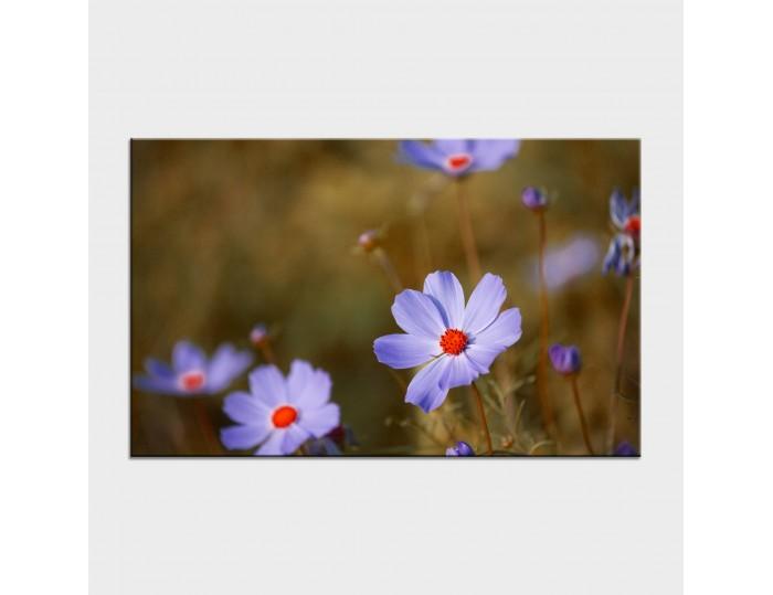 Tablouri cu flori cod flo-32
