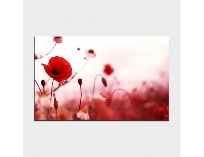 Tablouri cu flori cod flo-41