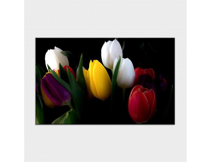 Tablouri cu flori cod flo-43