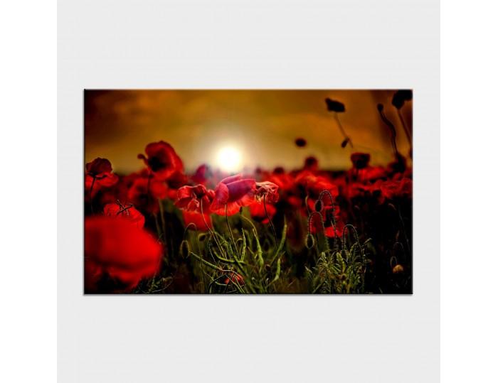 Tablouri cu flori cod flo-44