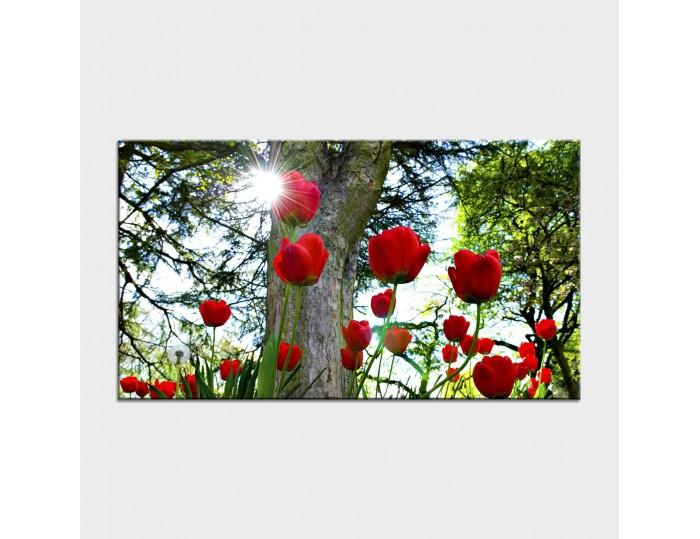 Tablouri cu flori cod flo-45